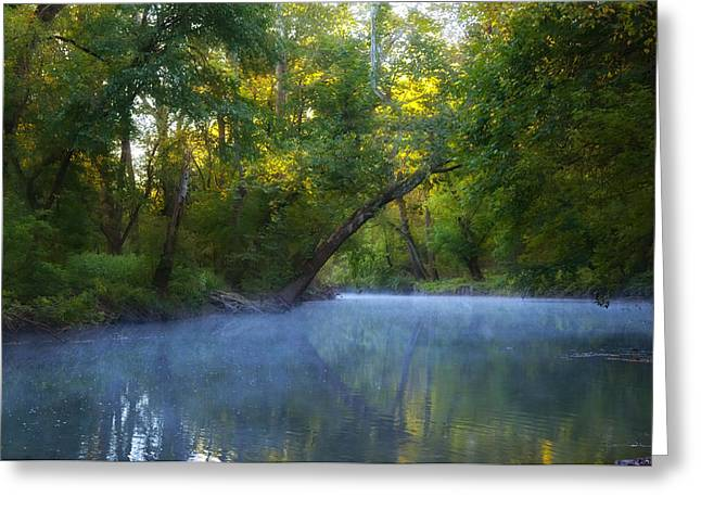 Wissahickon Creek - Flourtown Pa. Greeting Card by Bill Cannon
