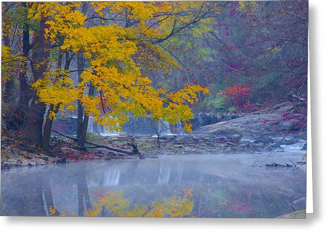 Wissahickon Morning In Autumn Greeting Card by Bill Cannon