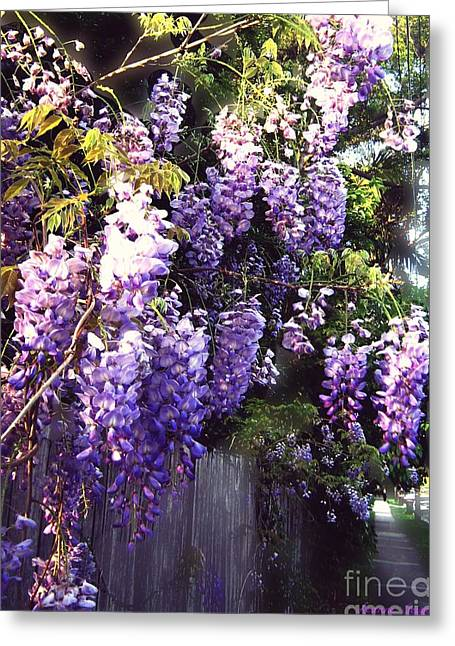 Wisteria Dreaming Greeting Card