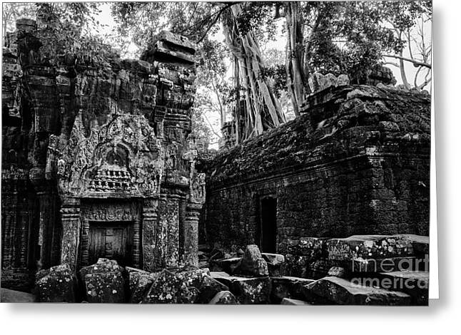 Within Ta Prohm Greeting Card by Julian Cook