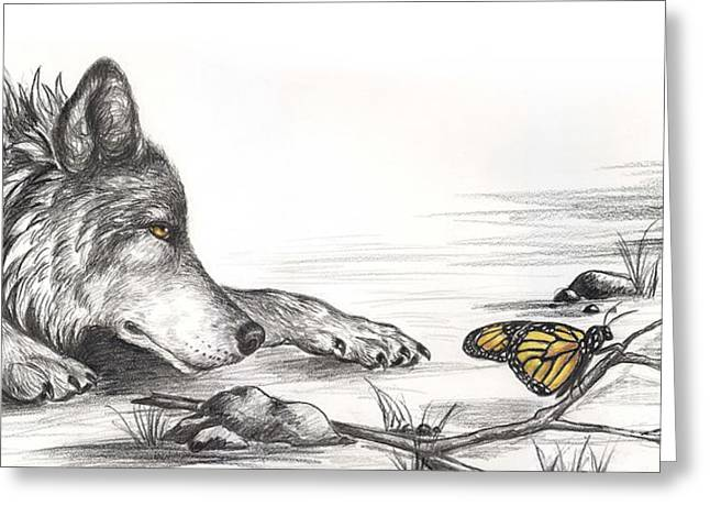 Wolf And Butterfly Greeting Card by Sharon Molinaro