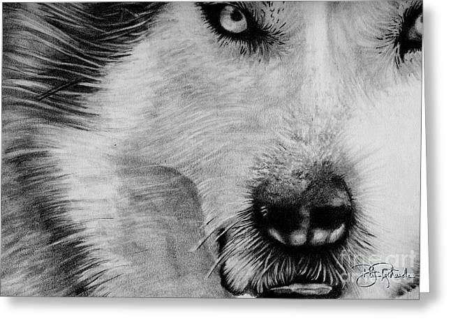 Wolf Greeting Card by Bill Richards