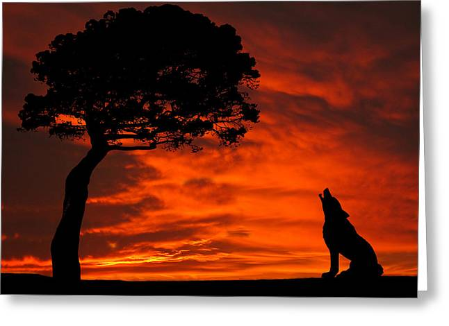 Wolf Calling For Mate Sunset Silhouette Series Greeting Card