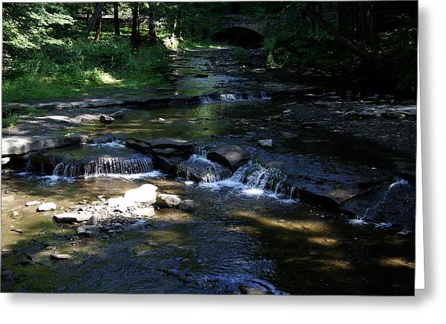Wolf Creek - Genese River Greeting Card by Christiane Schulze Art And Photography