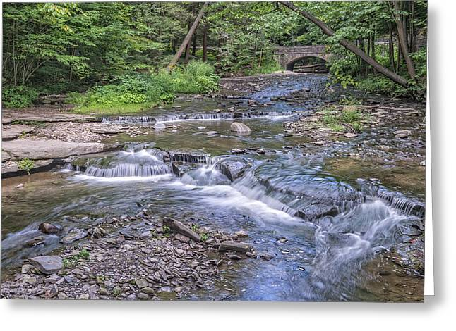 Wolf Creek At Letchworth State Park Greeting Card