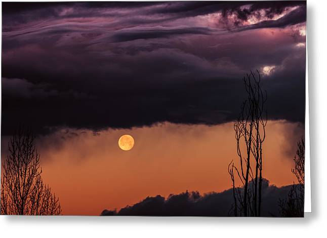 Wolf Moon Greeting Card by Roger Chenery