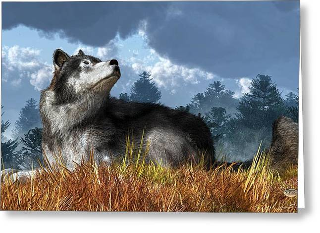 Wolf Resting In Grass Greeting Card