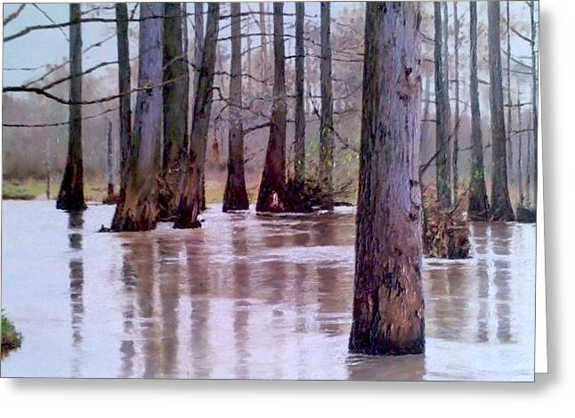 Wolf River Near Moscow Tennessee Greeting Card