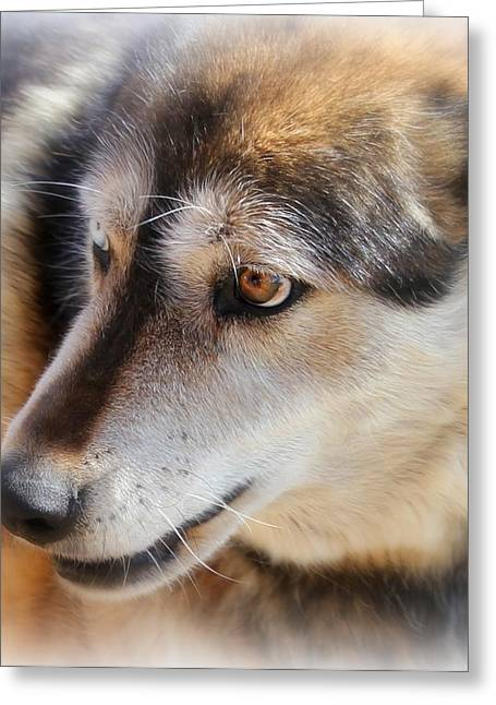 Wolf Spirit Greeting Card