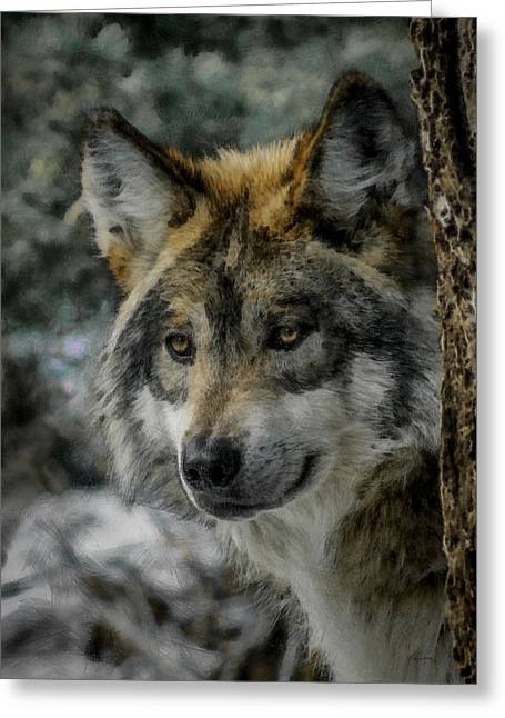 Wolf Upclose Painterly Greeting Card by Ernie Echols