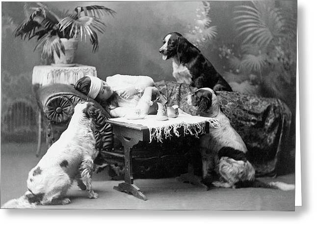 Woman And Dogs, C1903 Greeting Card