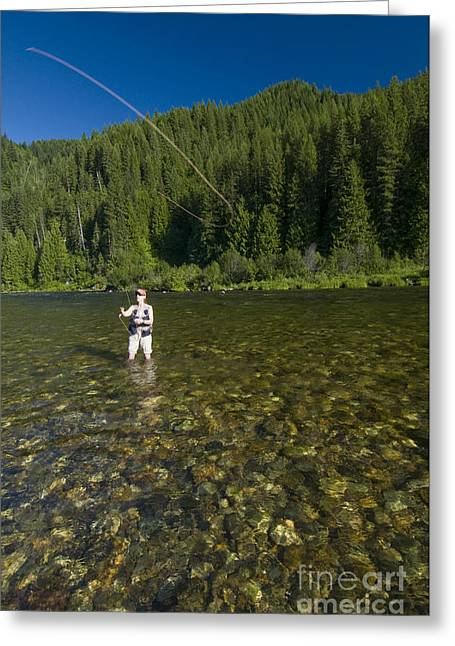 Woman Fly Fishing, Kelly Creek Greeting Card by William H. Mullins