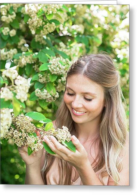 Woman Holding White Flowers Greeting Card by Ian Hooton/science Photo Library
