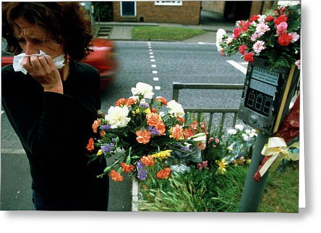 Woman Mourns A Road Kill Greeting Card by Jim Varney/science Photo Library