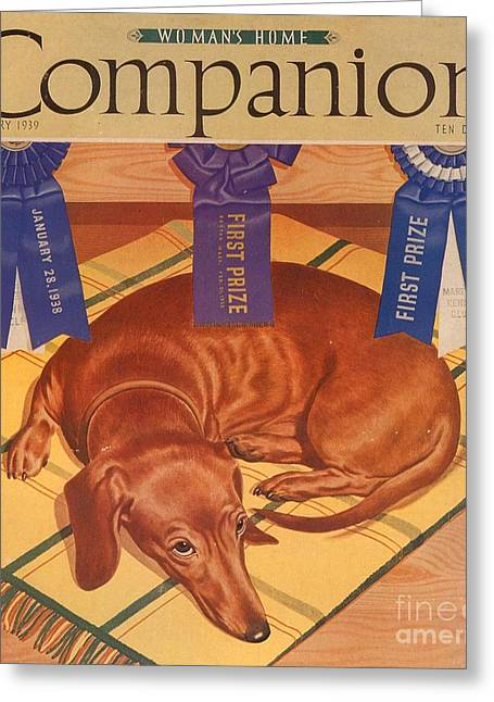 Womans Home Companion 1930s Usa Dogs Greeting Card by The Advertising Archives
