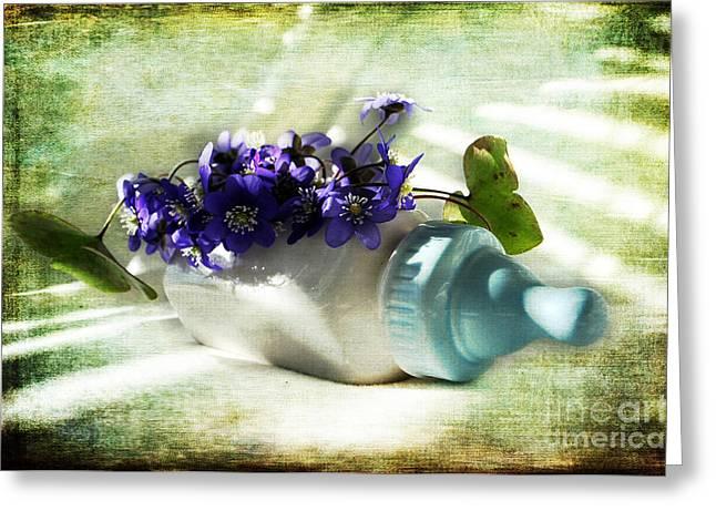 Wonders Happen In The Spring Greeting Card