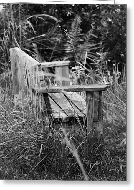 Wood Bench Greeting Card