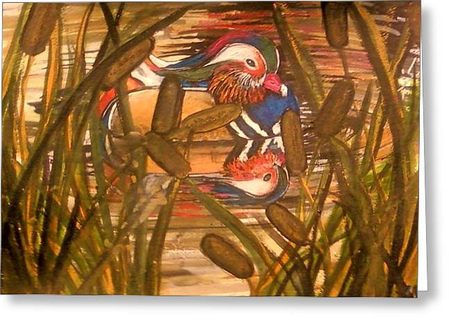 Wood Duck At Peace Greeting Card