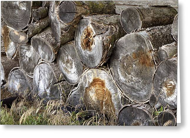 Wood Pile -  Fine Art  Photograph Greeting Card by Ann Powell