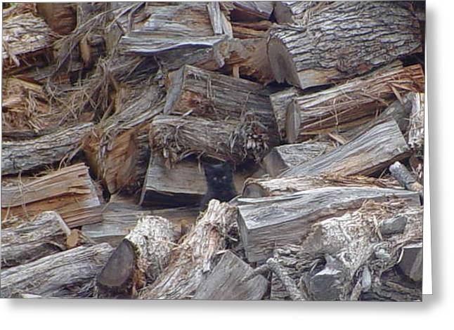 Greeting Card featuring the digital art Wood Pile Kitty by Leslie Byrne