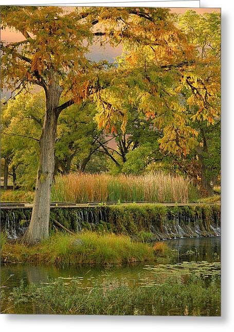 Woodcreek Bridge Greeting Card by Robert Anschutz