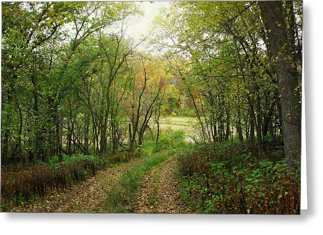 Wooded Path Greeting Card by Inspired Arts