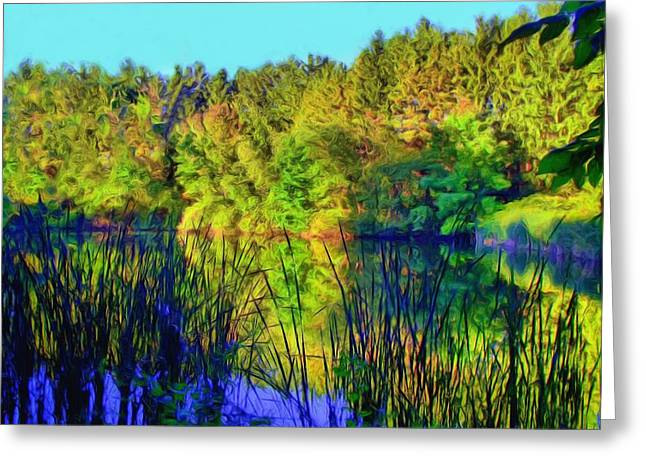 Wooded Shore Through Reeds Greeting Card by Dennis Lundell
