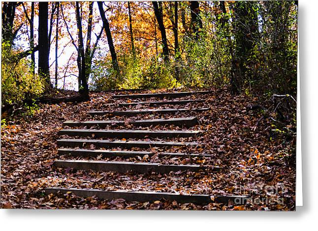 Wooded Stairs Greeting Card