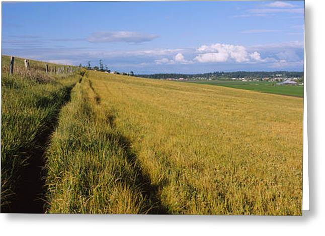 Wooden Fence Along A Farm, Ebeys Greeting Card by Panoramic Images