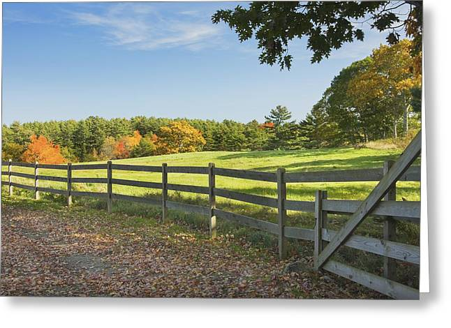 Rural Maine Roads Photographs Greeting Cards - Wooden Fence In Autumn Maine Farm Pasture Greeting Card by Keith Webber Jr