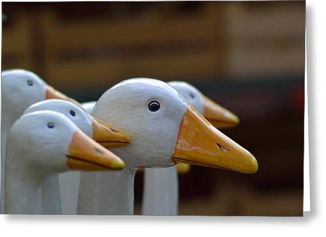Wooden Geese Greeting Card