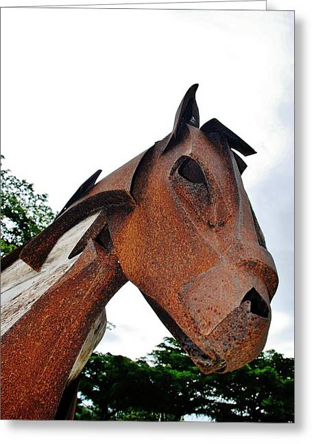 Wooden Horse28 Greeting Card by Rob Hans