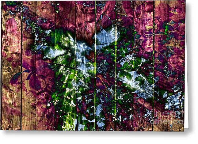 Wooden Planks And Sunlight Streaming Through Leaves II Greeting Card