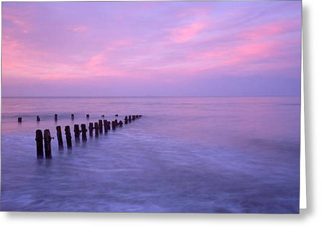 Wooden Posts In Water, Sandsend Greeting Card