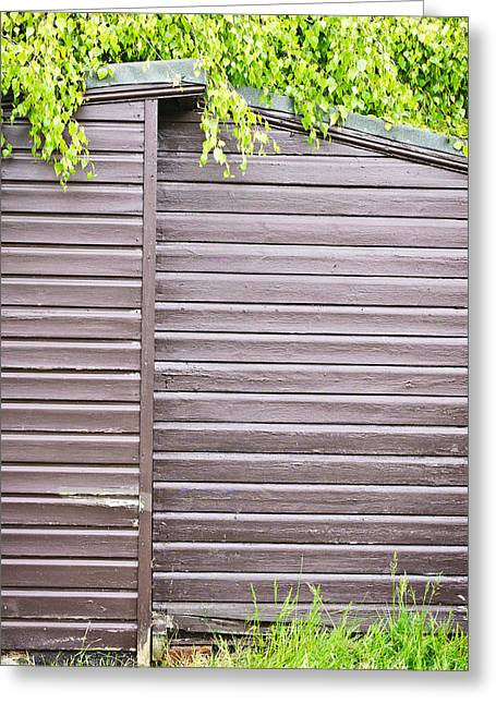 Wooden Shed  Greeting Card by Tom Gowanlock