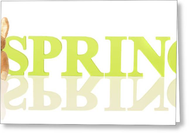 Wooden Spring Letters Greeting Card by Amanda Elwell