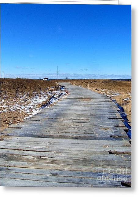 Plum Island Greeting Card by Eunice Miller