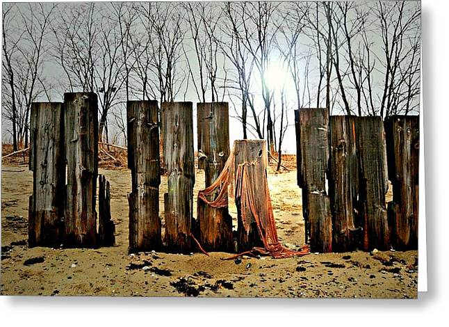 Woodhenge Greeting Card by Diana Angstadt