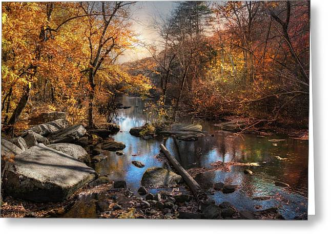 Greeting Card featuring the photograph Woodland Autumn by Robin-Lee Vieira