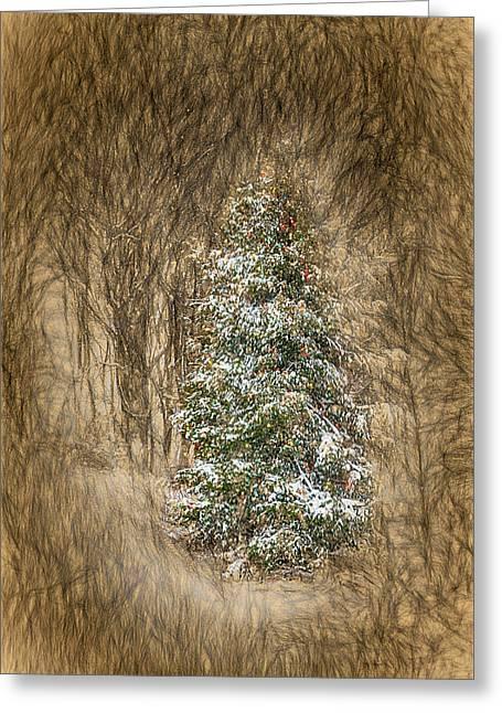 Woodland Christmas Greeting Card by John Haldane