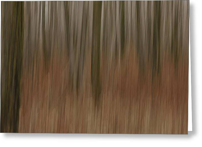 Woodland Dreams Greeting Card by Penny Meyers