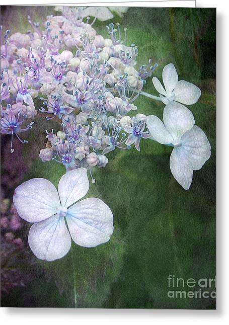Woodland Hydrangea In Blue Greeting Card