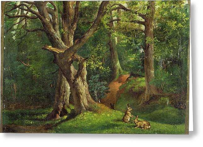 Woodland Scene With Rabbits Possibly Signed Greeting Card