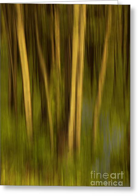 Woodland Tapestry Greeting Card