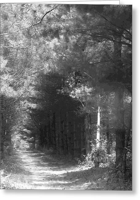 Woodland Tunnel Greeting Card