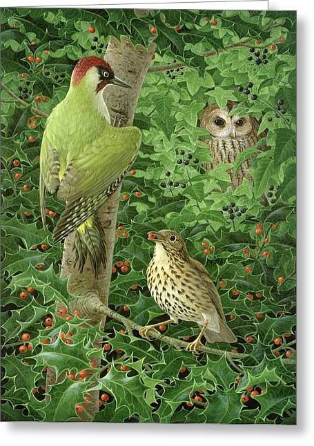 Woodpecker Owl And Thrush  Greeting Card by Birgitte Hendil