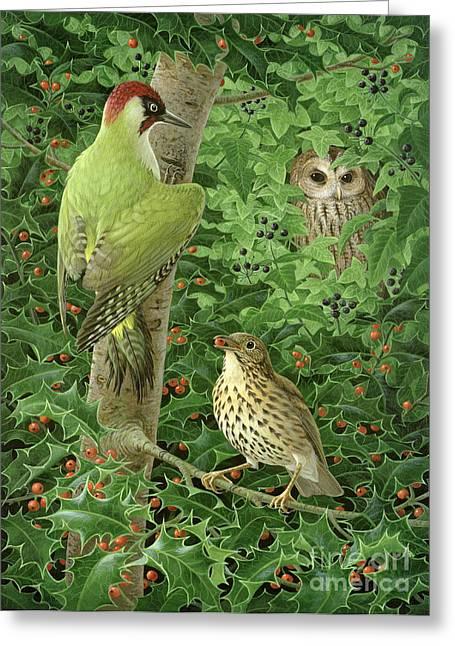 Woodpecker Owl And Thrush  Greeting Card by Birgitte Hendil