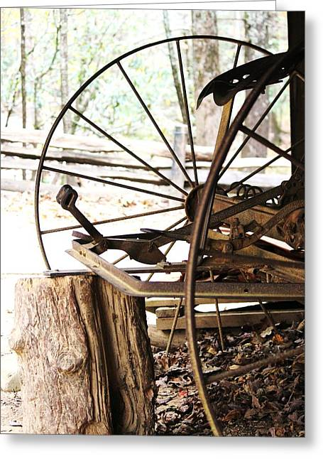 Greeting Card featuring the photograph Woody And Wheely by Faith Williams