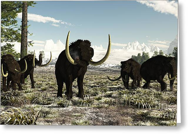 Woolly Mammoths In The Prehistoric Greeting Card by Arthur Dorety