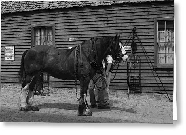 Work Horse Greeting Card